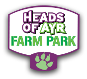Heads Of Ayr Farm Park Coupon Code