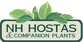 NH Hostas Coupon Code